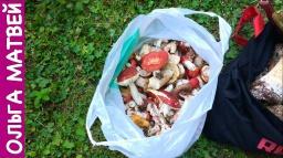 Ольга Матвей  -  Сыроежки В Кляре - Вкусно и Просто!!!! | Fried Mushrooms Recipe