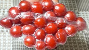 Урожайный огород Супер способ хранения томатов круглый год