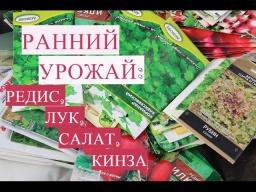 Юлия Минаева -  Ранний Урожай! Секреты Посадки Редиса, Салата, Лука, Кинзы в Теплице.