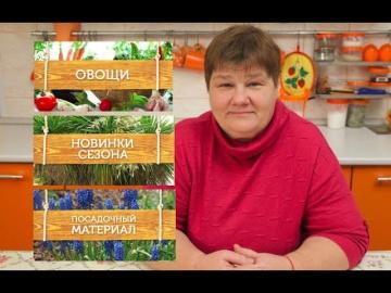 Юлия Минаева Где Еще Я Буду Покупать Семена? Открываю Тайну.