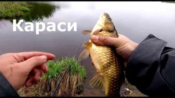 Рыбалка на карася с другом детства Маховая удочка