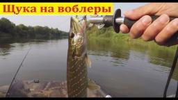 Ловля щуки на воблеры - Рыбалка в черте города | Простая рыбалка