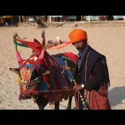 Гоа Индия: Место Свободы Мира и Умиротворения