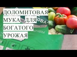 Юлия Минаева - Доломитовая Мука для Богатого Урожая Работает Проверено
