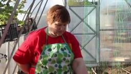 Юлия Минаева - Посадка огурцов Пошаговая инструкция к урожаю