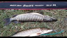 Рыбалка на секретном озере - Щука в октябре