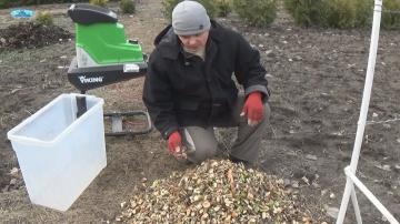 Делаем щепу из древесных остатков после обрезки сада и виноградника