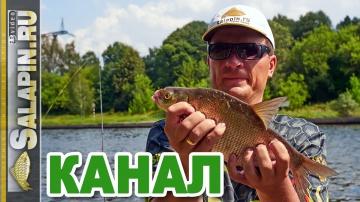 Рыбалка на канале: фидер, подлещик, начало августа [salapinru]