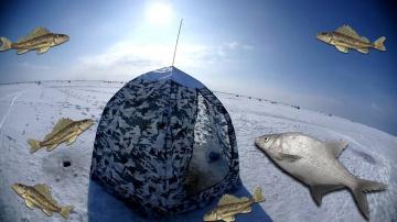 Ловля леща 2018 Весенняя рыбалка с палаткой на льду Куршский залив