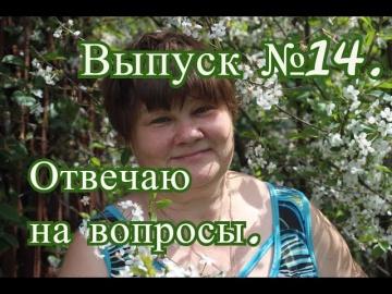 Юлия Минаева Прямая трансляция №14 (05.11.2016 г.).Отвечаю на Ваши вопросы.