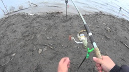 Карась | Дневник рыболова