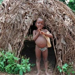 Лесные люди: Пигмеи Бака Камерун Африка