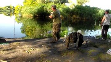 Огромный ЛИНЬ и много КАРАСЯ рыбалка удалась ! Ловля ковши 2018