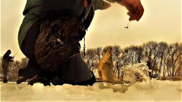 Зимняя РЫБАЛКА на хитрого КАРАСЯ Как поймать в плохой клёв