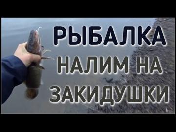 РЫБАЛКА НА ЗАКИДУШКИ / ОТКРЫТИЕ СЕЗОНА ОСЕНЬ 2016 ГОД / ЛОВЛЯ НАЛИМА