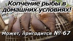 """ПашАсУралмашА:-Может, пригодится №67 """"Копчение рыбы в домашних условиях!"""""""
