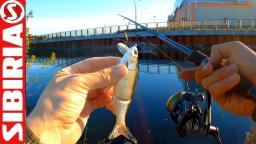 Ловля бобров на воблер Тест нового спиннинга и приманок на  микроречке