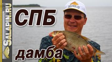 Рыбалка с фидером на дамбе Финского залива salapinru