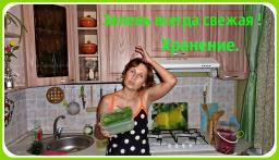 Ольга Уголок -  Как дольше сохранить свежую  зелень. Простой способ хранения свежей зелени.