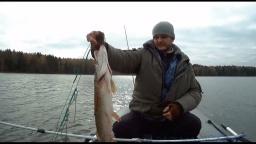 Рыбалка на щуку осенью - река Соложа