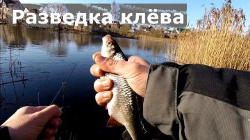 Разведка клёва на трёх озёрах Поплавочная рыбалка